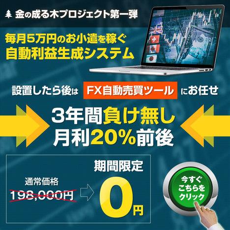金のなる木プロ1.jpg